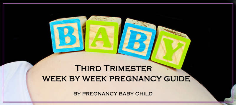 Third Trimester Week By Week Pregnancy Guide